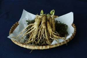 New Studies expand understanding of how ginseng effects the human body.
