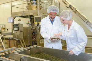 Bravo Teas are made in a CGMP environment and are 3rd party tested